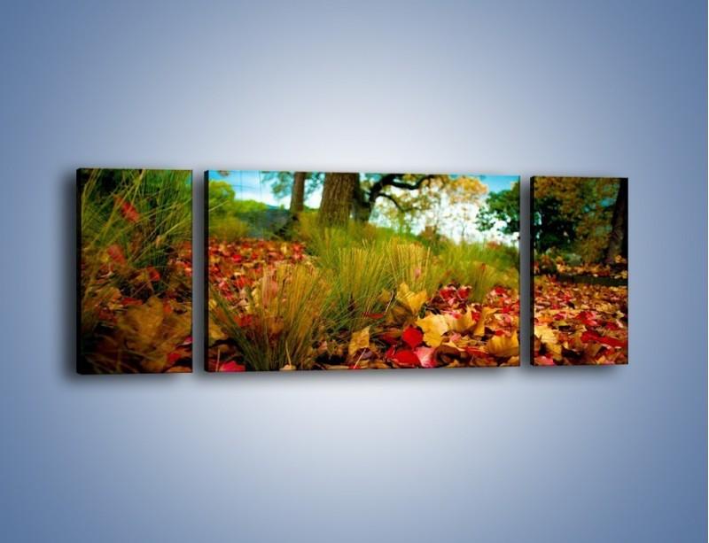 Obraz na płótnie – Droga usłana liśćmi – trzyczęściowy KN172W5