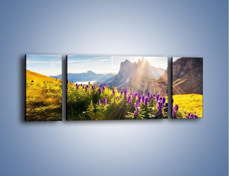Obraz na płótnie – Góry w poświacie słońca – trzyczęściowy KN502W5