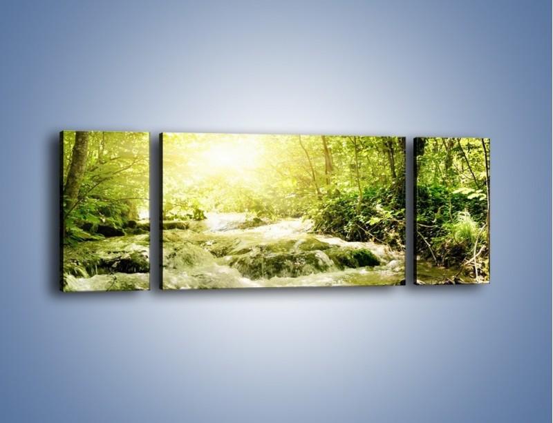Obraz na płótnie – Wzburzony potok leśny – trzyczęściowy KN508W5