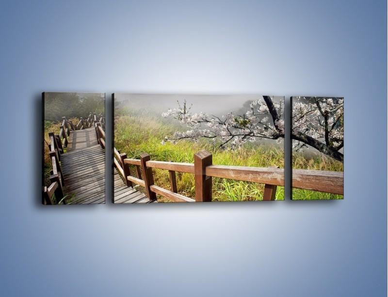 Obraz na płótnie – Drzewo wiśni i kręte schody – trzyczęściowy KN698W5