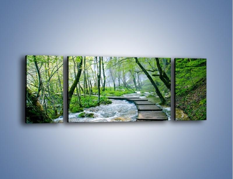 Obraz na płótnie – Drewniana kładką przez potok – trzyczęściowy KN720W5