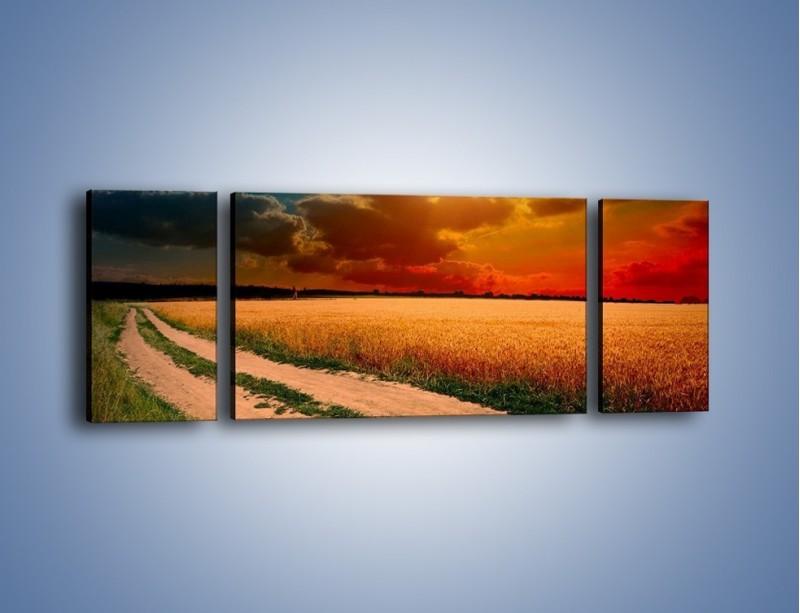 Obraz na płótnie – Zbożowa polana i jej cały urok – trzyczęściowy KN776W5