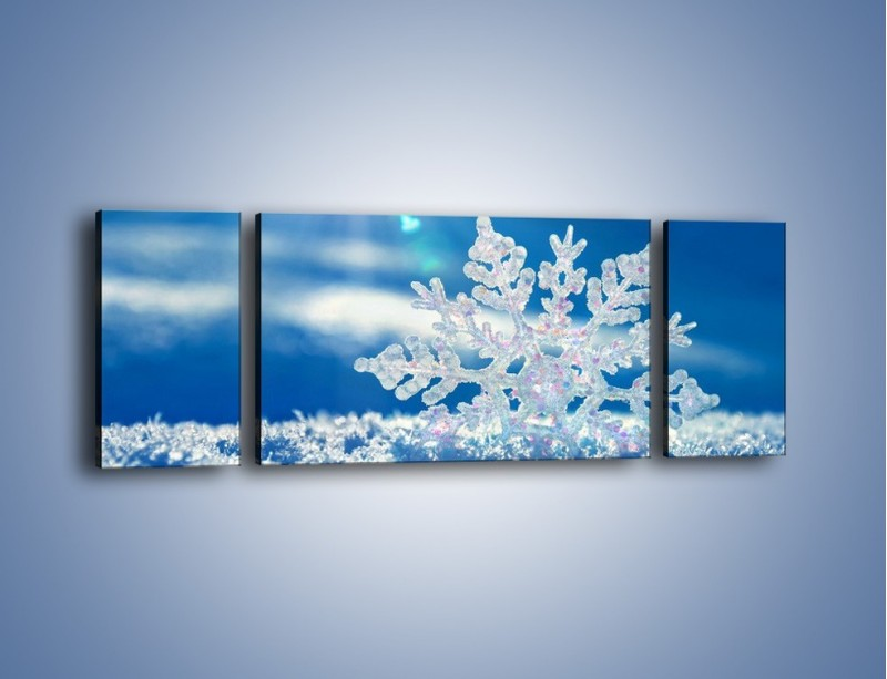 Obraz na płótnie – Diamentowa śnieżynka – trzyczęściowy KN808W5