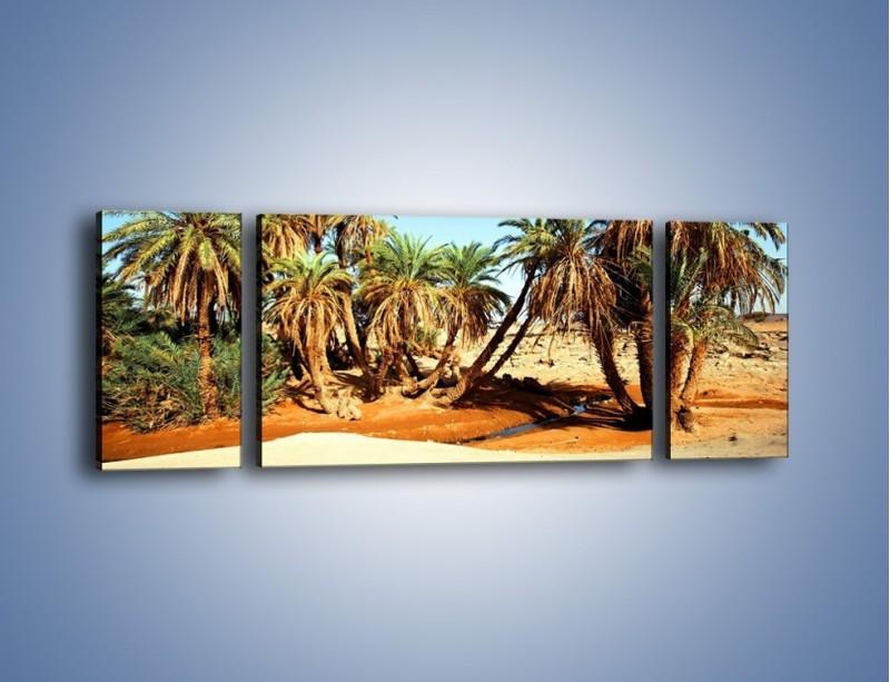 Obraz na płótnie – Palmowa rodzina w komplecie – trzyczęściowy KN809W5