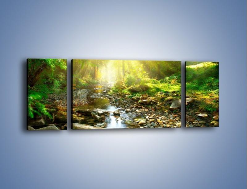 Obraz na płótnie – Kamiennym urwiskiem wśród potoku – trzyczęściowy KN827W5