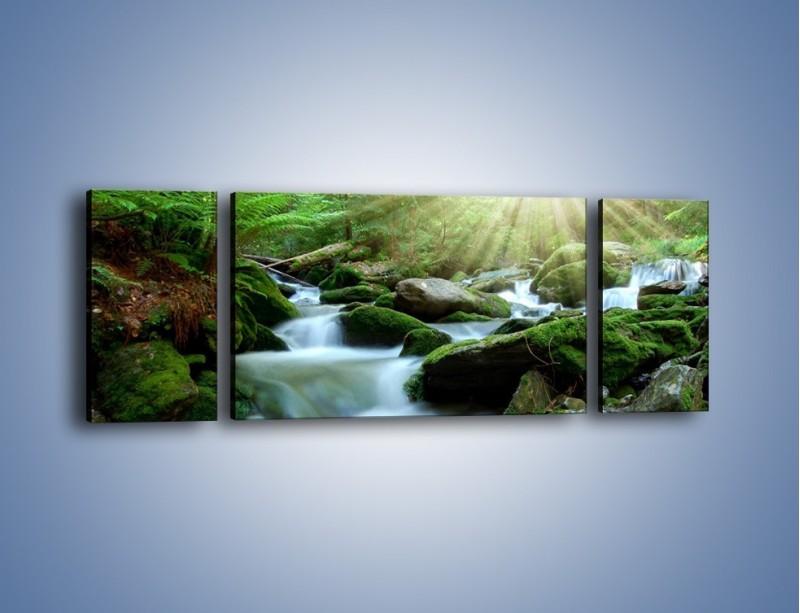 Obraz na płótnie – Silny potok w środku lasu – trzyczęściowy KN861W5