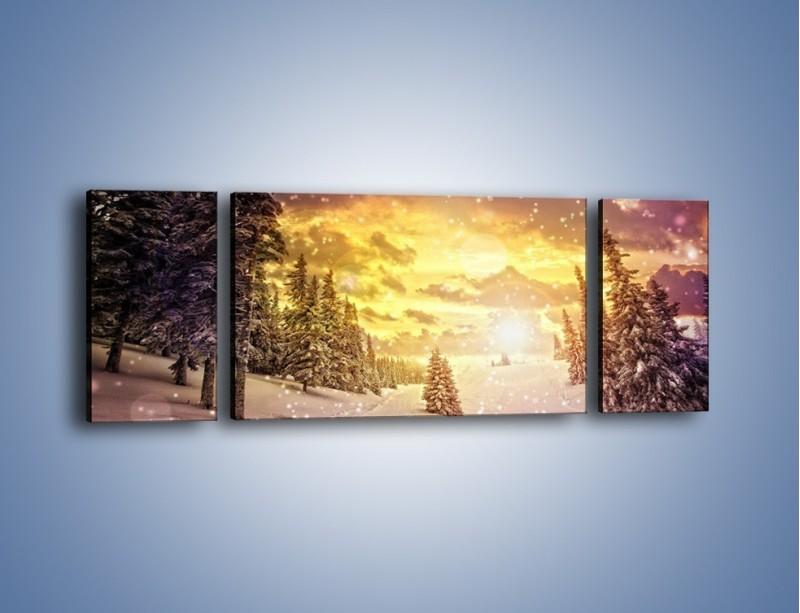 Obraz na płótnie – Śnieżna kraina – trzyczęściowy KN868W5