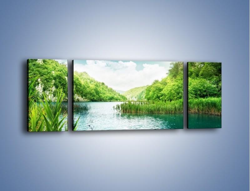 Obraz na płótnie – Wodnym śladem wśród zieleni – trzyczęściowy KN884W5