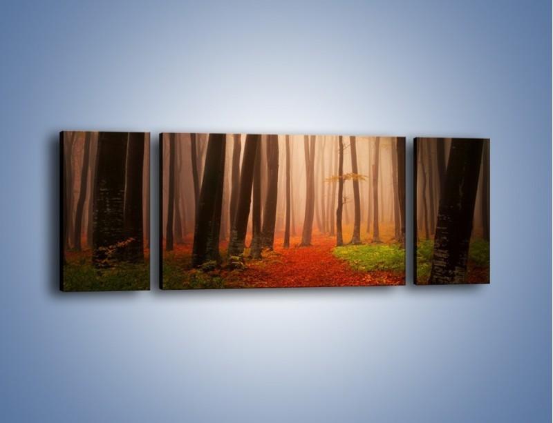 Obraz na płótnie – Las pełen tajemnic – trzyczęściowy KN909W5