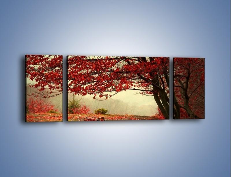 Obraz na płótnie – Spadające liście z drzew – trzyczęściowy KN910W5