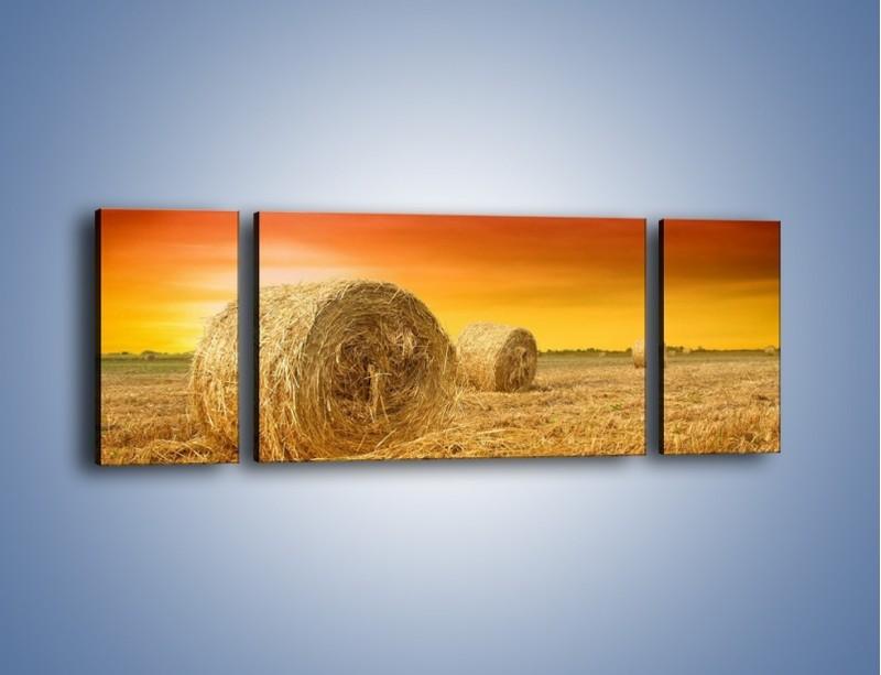 Obraz na płótnie – Koła z siana – trzyczęściowy KN958W5