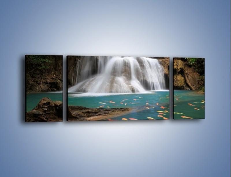Obraz na płótnie – Wodospad i kolorowe rybki – trzyczęściowy KN994W5