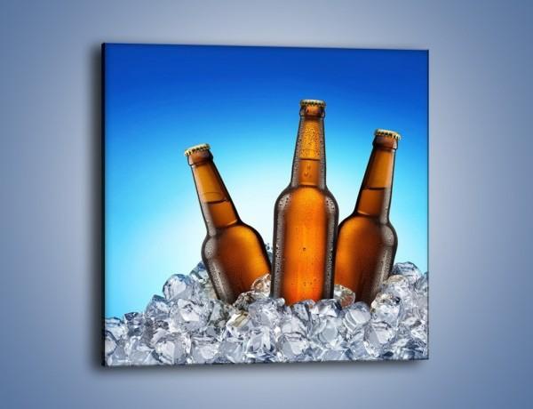 Obraz na płótnie – Szron na butelkach piwa – jednoczęściowy kwadratowy JN075