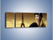 Obraz na płótnie – Czarna dama w paryżu – trzyczęściowy L114W5