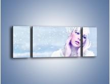 Obraz na płótnie – Delikatna królowa śniegu – trzyczęściowy L224W5