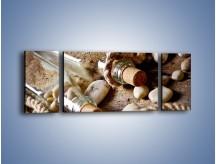 Obraz na płótnie – Morskie dodatki przy butelkach – trzyczęściowy O090W5
