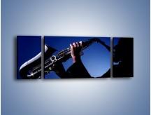 Obraz na płótnie – Koncert na saksofonie – trzyczęściowy O110W5
