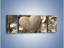 Obraz na płótnie – Miłość do muszli i morza – trzyczęściowy O132W5