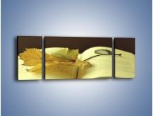 Obraz na płótnie – Liść na ciekawej powieści – trzyczęściowy O163W5