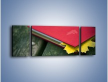 Obraz na płótnie – Książka z jesiennym akcentem – trzyczęściowy O167W5
