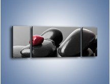Obraz na płótnie – Czerwień wśród czarności – trzyczęściowy O212W5