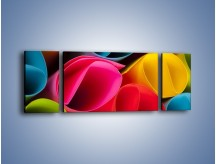 Obraz na płótnie – Kolorowe rulony – trzyczęściowy O217W5