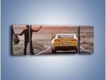 Obraz na płótnie – Chevrolet Camaro na pustynnej drodze – trzyczęściowy TM080W5