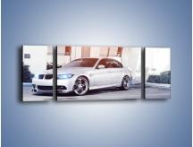 Obraz na płótnie – BMW 3 E90 – trzyczęściowy TM112W5