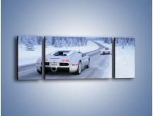Obraz na płótnie – Bugatti Veyron w śniegu – trzyczęściowy TM134W5
