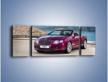 Obraz na płótnie – Bentley Continental Speed GT – trzyczęściowy TM187W5