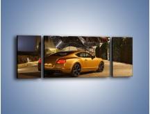 Obraz na płótnie – Bentley Continental GT V8 – trzyczęściowy TM190W5