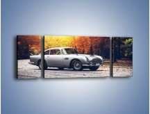 Obraz na płótnie – Aston Martin DB5 – trzyczęściowy TM208W5