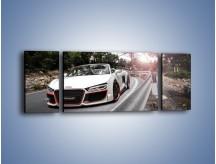 Obraz na płótnie – Audi R8 V10 Spyder – trzyczęściowy TM209W5