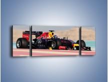 Obraz na płótnie – F1 Infiniti Red Bull – trzyczęściowy TM241W5