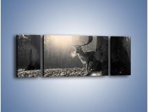Obraz na płótnie – Jeleń w sepii – trzyczęściowy Z250W5