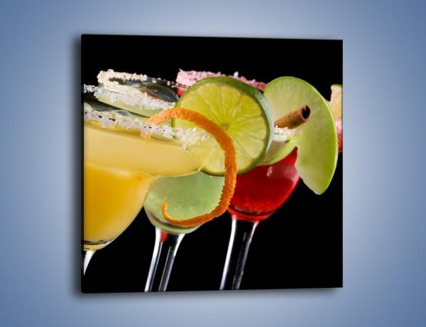 Obraz na płótnie – Drinki z dodatkiem owoców – jednoczęściowy kwadratowy JN101