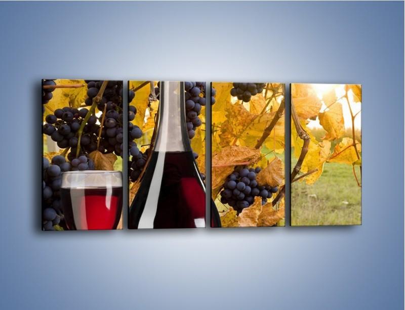 Obraz na płótnie – Wino wśród winogron – czteroczęściowy JN007W1