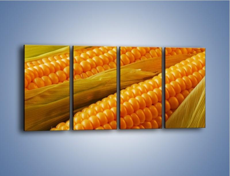 Obraz na płótnie – Kolby dojrzałych kukurydz – czteroczęściowy JN046W1
