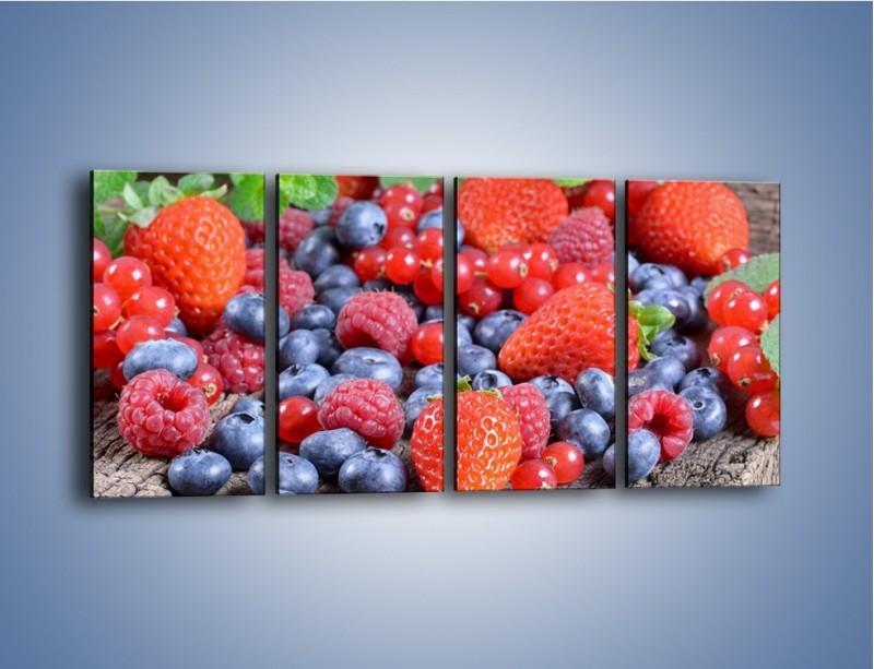 Obraz na płótnie – Owoce z działki – czteroczęściowy JN422W1