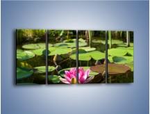 Obraz na płótnie – Ciemno-różowy nenufar na wodzie – czteroczęściowy K014W1