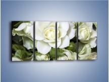 Obraz na płótnie – Białe róże na stole – czteroczęściowy K131W1