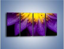 Obraz na płótnie – Baśniowy kwiat z tajemnicą – czteroczęściowy K189W1