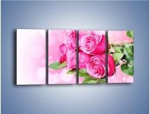 Obraz na płótnie – Róża na każdą okazję – czteroczęściowy K253W1
