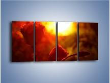 Obraz na płótnie – Słońce czy róża – czteroczęściowy K264W1