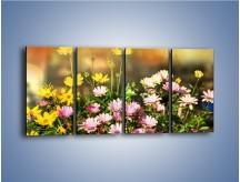 Obraz na płótnie – Polne kwiaty z uśmiechem – czteroczęściowy K456W1