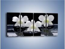 Obraz na płótnie – Biel w kwiecie nocą – czteroczęściowy K512W1