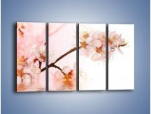 Obraz na płótnie – Blask kwiatów jabłoni – czteroczęściowy K569W1