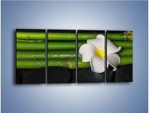 Obraz na płótnie – Samotny kwiat wśród kamieni – czteroczęściowy K668W1