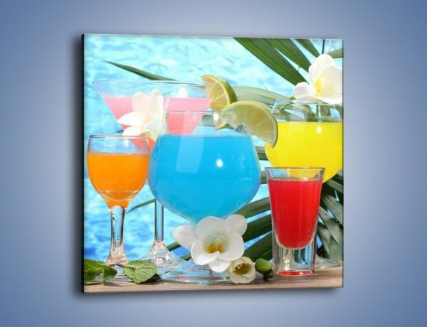 Obraz na płótnie – Drinki na tropikalnej wyspie – jednoczęściowy kwadratowy JN163