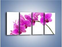 Obraz na płótnie – Kwiaty w lewą stronę – czteroczęściowy K853W1